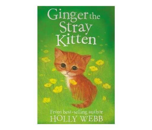 Ginger the Stray Kitten
