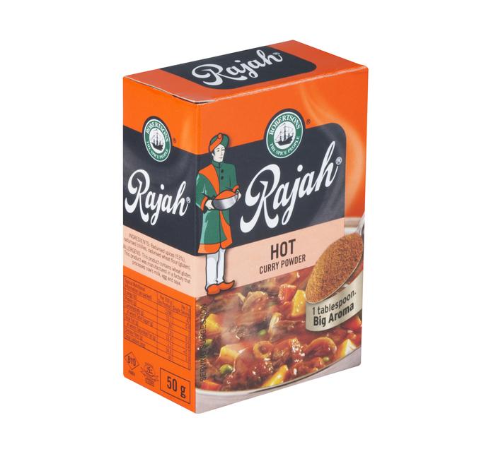 Rajah Curry Powder Hot (10 x 100g)