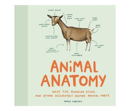 Animal Anatomy : Sniff tips, running sticks, and other accurately named animal parts