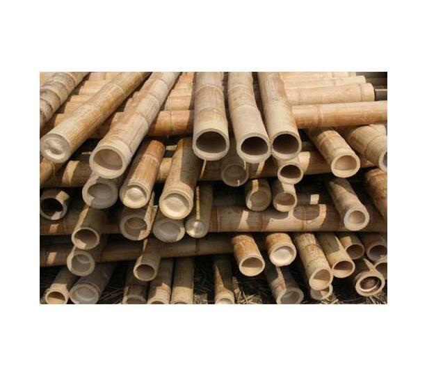 Bamboo Poles 2.4m x 35-40mm dia (10 poles p/pack)