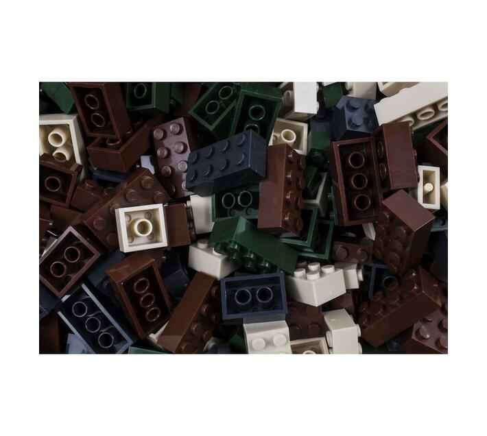 CAMO Coloured 1kg Bag of Bricks