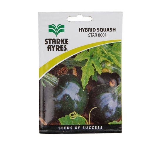 Starke Ayres Squash Seed