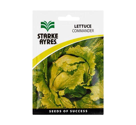 Starke Ayres Lettuce Seed