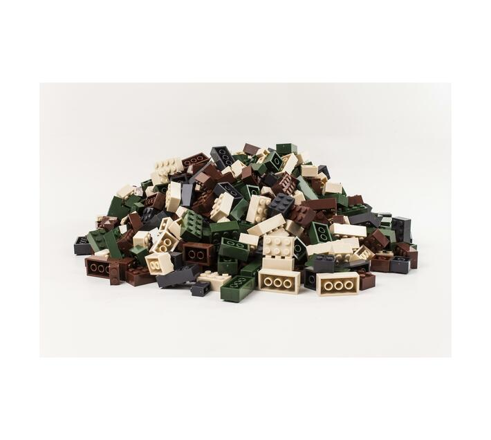 CAMO Coloured 1kg Bag of Bricks
