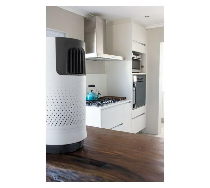 Briza 80W Air Cooler