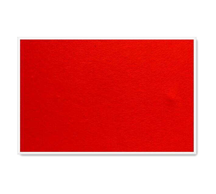 PARROT PRODUCTS Info Board (Plastic Frame, 600*450mm, Burnt Orange)
