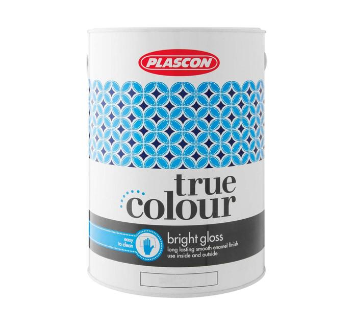 Plascon 5 l True Colour Gloss