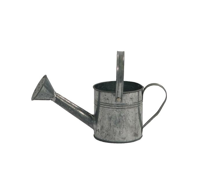 Decor Watering Can