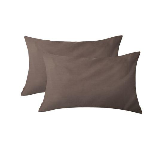 Primaries Standard Pillowcases 2-Pack Coffee