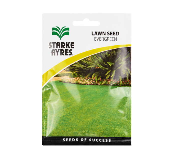 Starke Ayres Lawn Seed