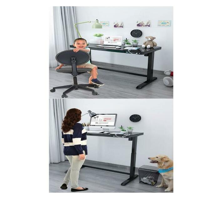 College Originals Electric Standing Desk Executive Motion Combo Edition
